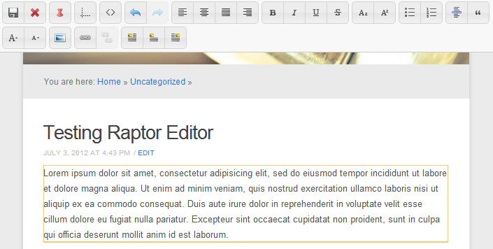 raptor editor frontend1 Wordpress Front end Posting Plugins and Tutorials