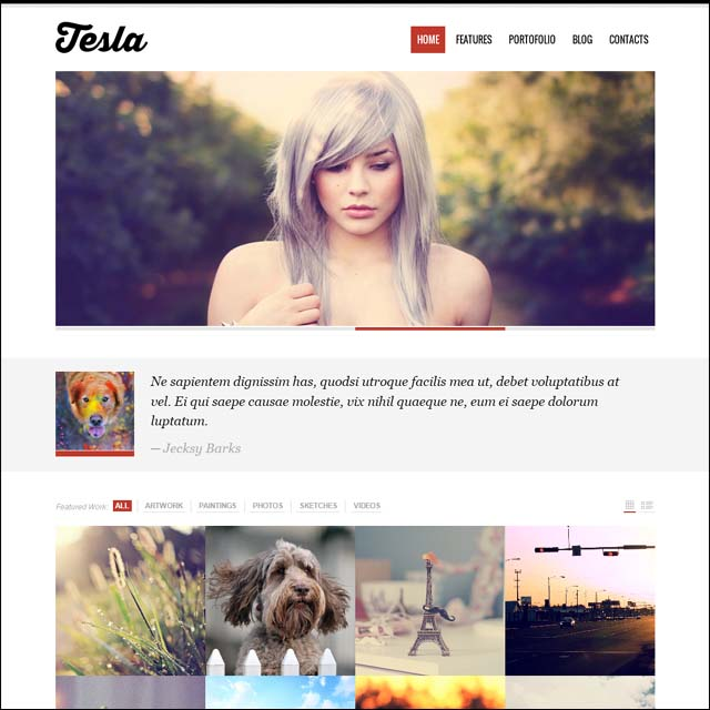 19LDDDi 40+ Free Responsive Wordpress Themes
