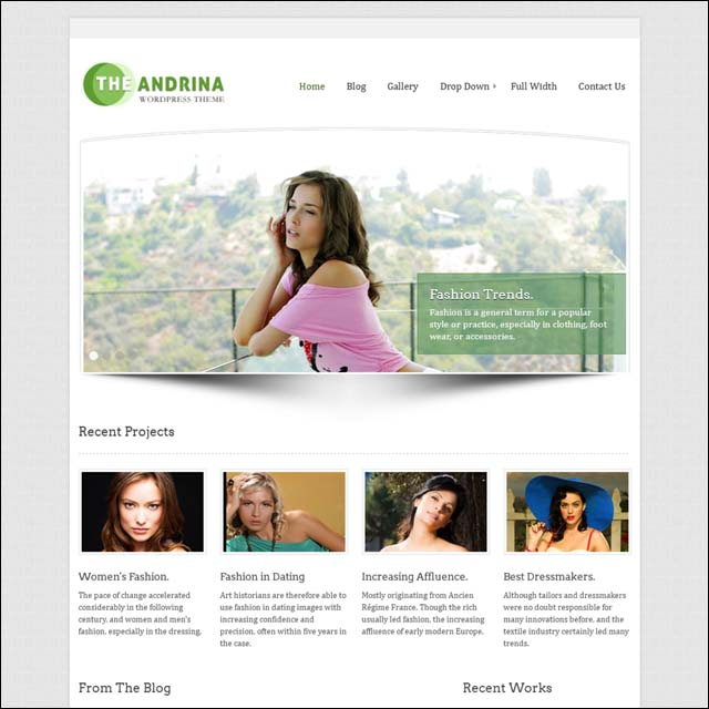 Andrina 40+ Free Responsive Wordpress Themes