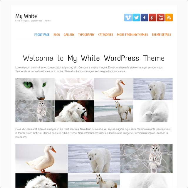 my white free wordpress theme1 40+ Free Responsive Wordpress Themes