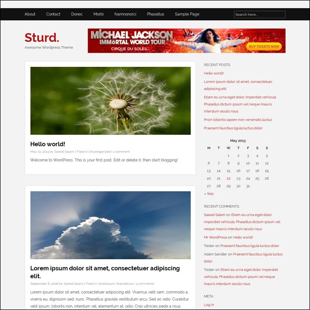 sturd wordpress theme 40+ Free Responsive Wordpress Themes