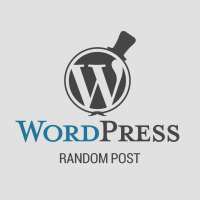 How to Display WordPress Random Post in your Theme